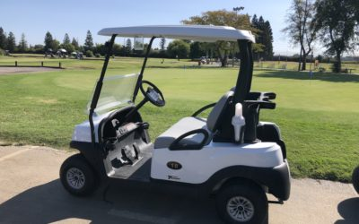 New Golf Carts & Website!